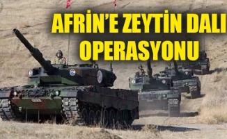 AFRİN'E ZEYTİN DALI OPERASYONU