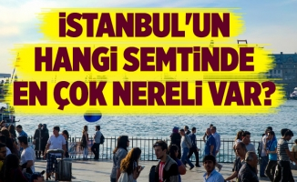 İstanbul'un hangi semtinde en çok nereli var?