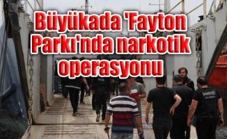 Büyükada 'Fayton Parkı'nda narkotik operasyonu
