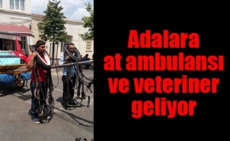 Adalara at ambulansı ve veteriner geliyor
