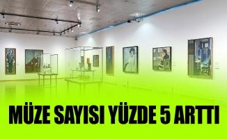 MÜZE SAYISI YÜZDE 5 ARTTI