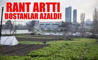 RANT ARTTI, BOSTANLAR AZALDI!
