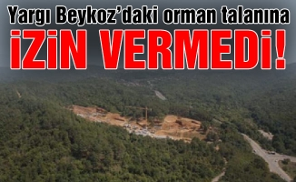 Yargı Beykoz'daki orman talanına izin vermedi!