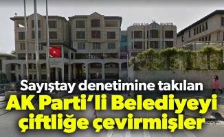 Sayıştay denetimine takılan AK Parti'li Belediyeyi çiftliğe çevirmişler