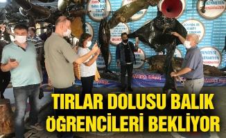 Türkiye'nin tek balık müzesine ödül