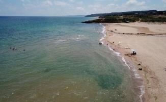 Şile Sahili'nde 'Çamur' İsyanı