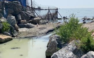 Kadıköy'de denize akan 'renkli su' endişesi