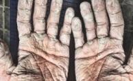 Rekor kıran eller