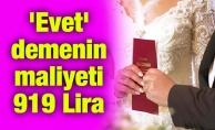 'Evet' demenin maliyeti 919 Lira