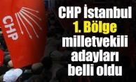 CHP İstanbul 1. Bölge Milletvekili Adayları Belli Oldu