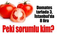 Domates tarlada 3, İstanbul'da 8 lira.Peki sorumlu kim?