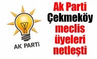 Ak Parti Çekmeköy meclis üyeleri netleşti