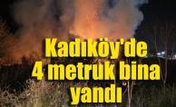 Kadıköy'de 4 metruk bina yandı