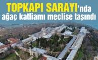 Topkapı Sarayı'nda ağaç katliamı meclise taşındı