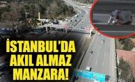 İstanbul'da akıl almaz manzara!