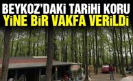 Beykoz'daki tarihi koru yine bir vakfa verildi