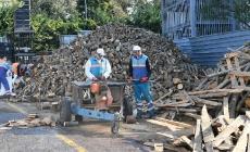 Kış Aylarında Odun Yardımı İle Yürekler Isınacak